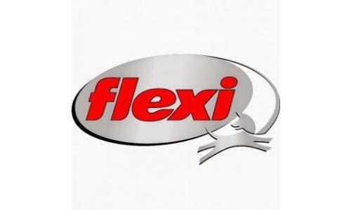flexi-logo-0-1-2-600x315